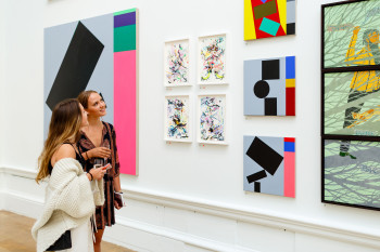 Membership Benefits Friends Event In Summer Exhibition 2017