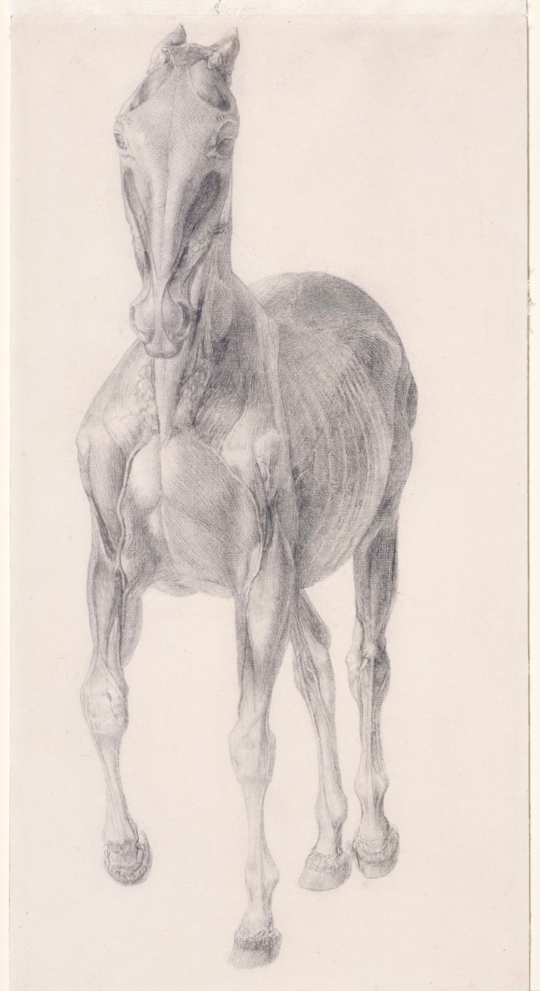 George Stubbs Artist Royal Academy Of Arts
